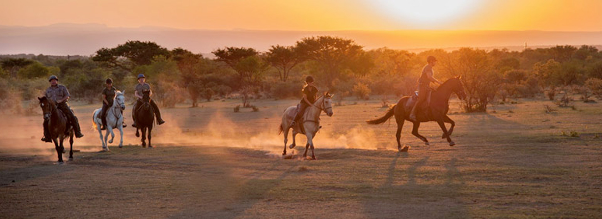 why-cruiser-safaris-activities